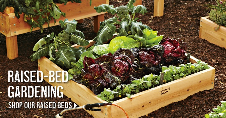 Raised Bed Gardens Pretty Enough For Front Yards