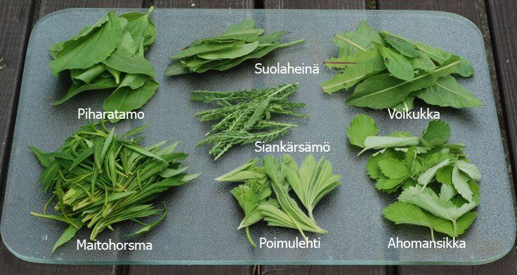 7 kasvin juhannussalaatti