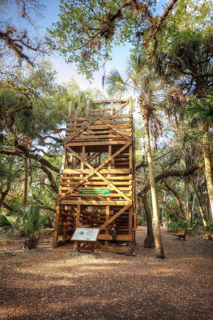 This Swinging Bridge In Florida Will Make Your Stomach Drop Only In Your State Rainbow Springs State Park Swinging Bridge Myakka River State Park