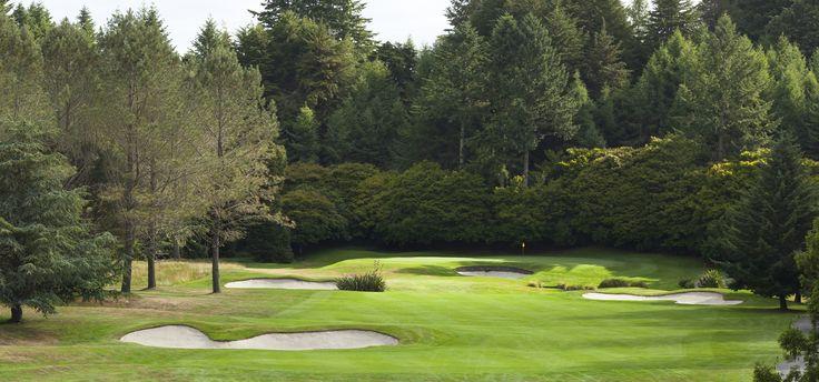 11th hole, Wairakei Golf + Sanctuary