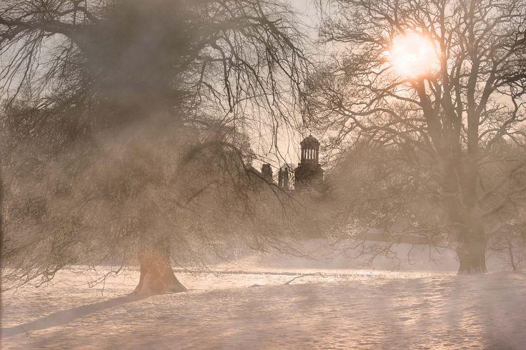 Misty Christmas