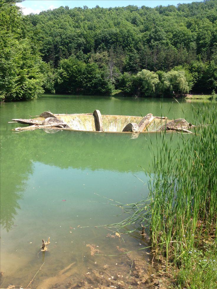 Lacul Vida-Bihor-Romania