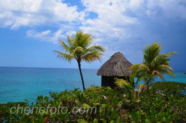 Favorite Places...Negril Jamaica....