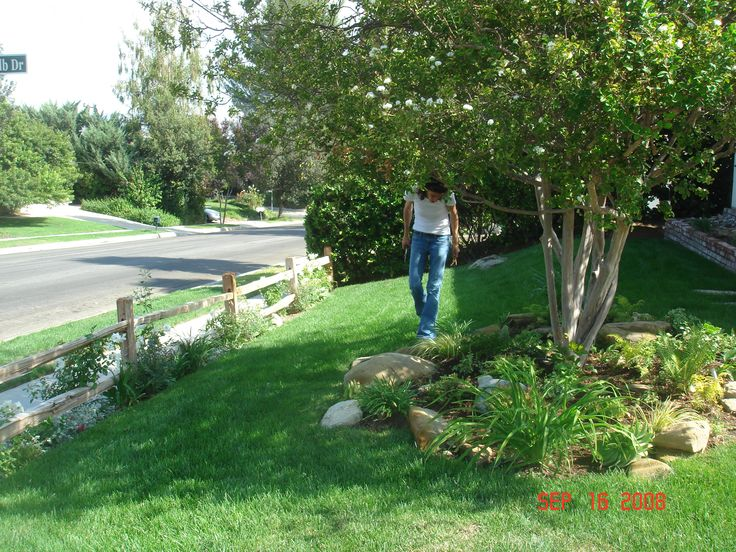 20 best images about landscaping front yard on pinterest for Landscaping rocks under trees