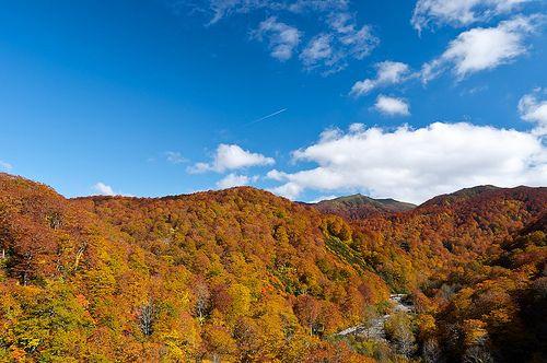 Isawagawakeikoku/胆沢川渓谷