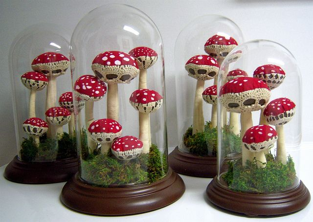 The toadstool terrariums are the work of Holly Procktor. You can visit her blog Holly Handmade to learn more about her creations.