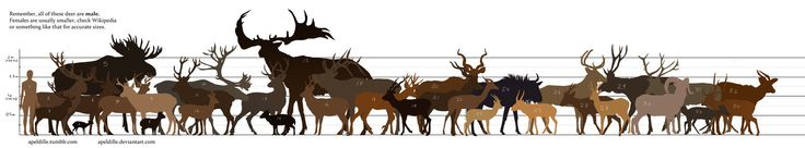 Because people have been asking! This thing seems to be my internet legacy. It was made for the The Endless Forest community, hence the human-faced fantasy deer added. Download for big size! People...