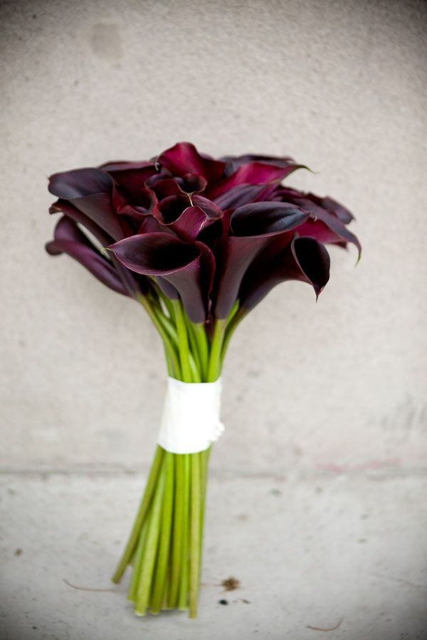 black calla lily bouquet // photo by CallawayGable.com
