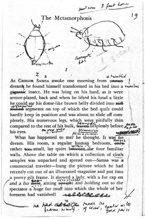 Nabokov's drawings and annotations on the first page of Kafka's the Metamorphosis. He certainly had some thoughts about the language – or at least the translation.