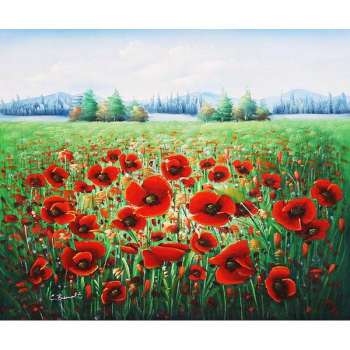 ON SALE! - Field of Poppies - $59.99 - Fields and Meadows - Hand Painted - Oil Paingings for Sale - Oil on Canvas - Cheap Canvas Art