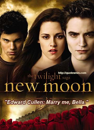 How to write a research paper with the topic of the Twilight Saga?