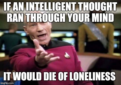 Picard Wtf Meme | IF AN INTELLIGENT THOUGHT RAN THROUGH YOUR MIND IT WOULD DIE OF LONELINESS | image tagged in memes,picard wtf | made w/ Imgflip meme maker