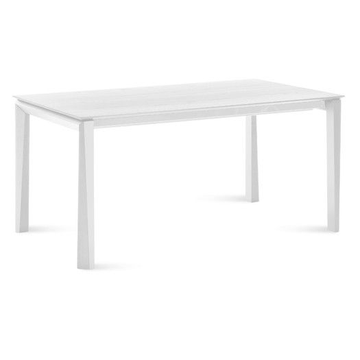 Domitalia Universe Extendable Dining Table | AllModern