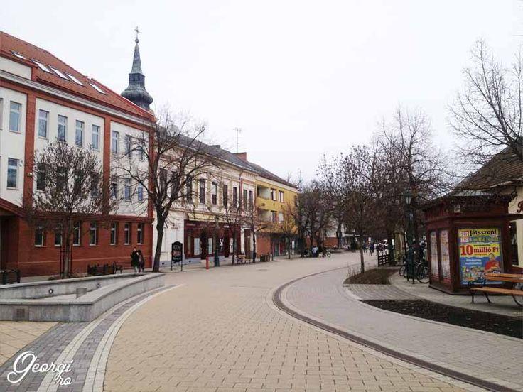 http://georgi.ro/wellness-hotel-gyula/