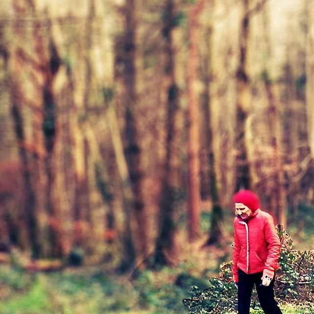 Red in the woods. Walking #killinthomaswoods #kildare #ireland