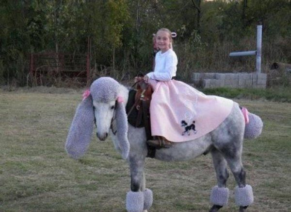 Girl in Poodle Skirt Rides Horse Dressed as Poodle