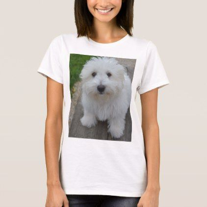 coton on bench T-Shirt - dog puppy dogs doggy pup hound love pet best friend