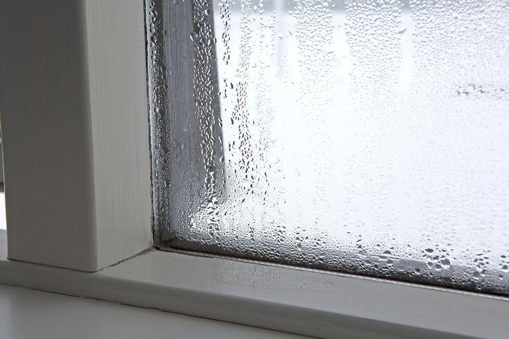 200+ best casa images on Pinterest Living room, Plants and Backgrounds - condensation dans la maison
