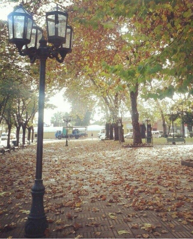 Plaza de armas Linares Chile . Bonita ciudad