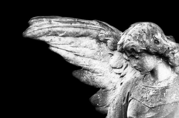 Statues Of Angels Free Stock Photo - Public Domain Pictures
