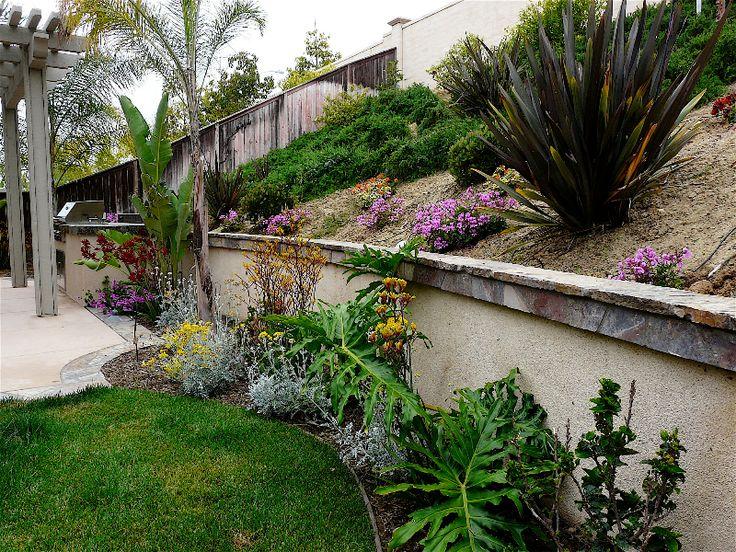 Like Single Walk With Slope. Like Plants As Option In Front Of Wall. Backyard  Landscape DesignBackyard ...