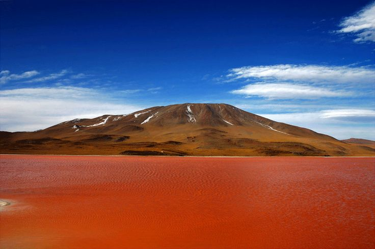 Laguna Roja, Arica - Chile #Expo2015 #Milan #WorldsFair