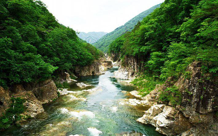 Lataa kuva River, Kiviä, kaunis luonto, Nikko Kansallisen Palkinnon, Ja Kuuluisa Puisto, Japani