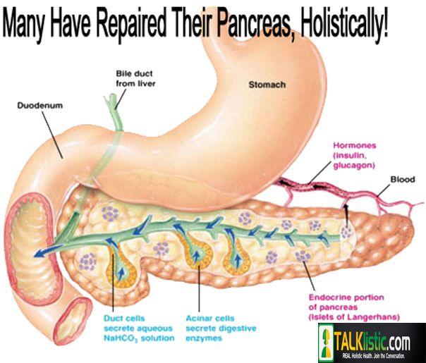 24 best pancreatitis images on pinterest, Cephalic Vein