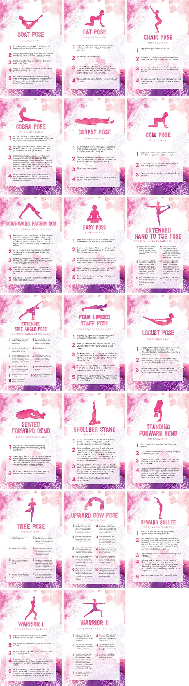 Beginner Yoga Poses Bundle   By Healthinomics