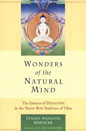 It can be said that when we experience the fruition of the sky gazing practice we are seeing primordial awareness itself through our physical eyes......... In this way we develop the trekcho contemplation practice of remaining in union with space.  Wonders of the Natural Mind: The Essence of Dzogchen in the Native Bon Tradition  http://www.amazon.com/dp/1559391421/ref=cm_sw_r_pi_dp_MuUZrb1Y02R4P
