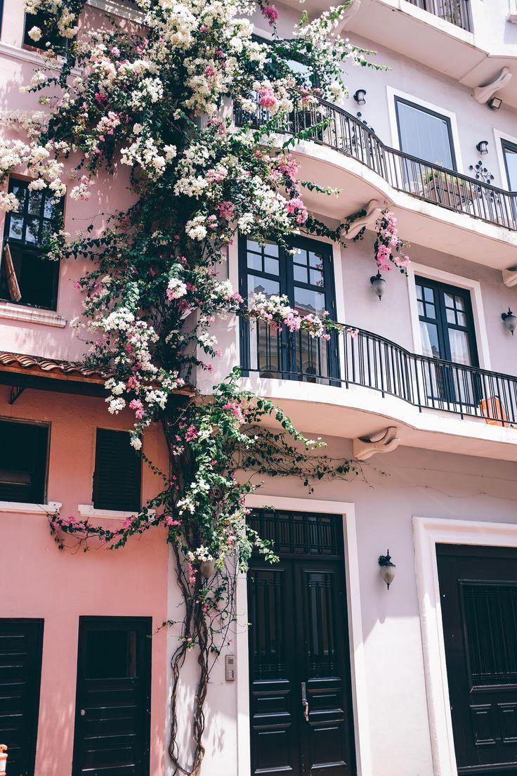 Jess Ann Kirby nimmt ein Foto von den schönen Blumen an den Gebäudefronten in Casc