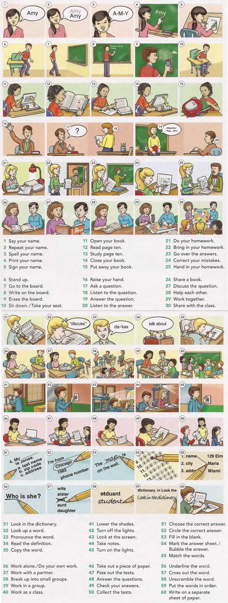 Learning English Vocabulary and Grammar|Classroom Commands for a Teacher. This could be a VERY useful infographic/picture dictionary for teachers working with newcomers and low English proficiency ELLs, particularly when they are new and first acclimating to class and learning school routines.