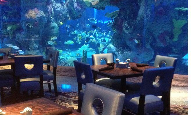 Aquarium Restaurant - Nashville, TN