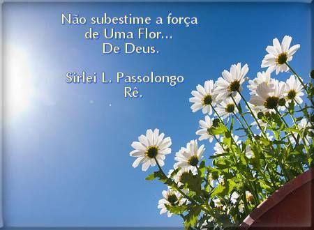 Sirley Passolongo
