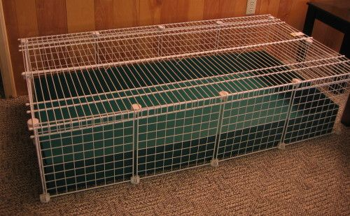 34 best images about small critters on pinterest indoor for Wire guinea pig cages