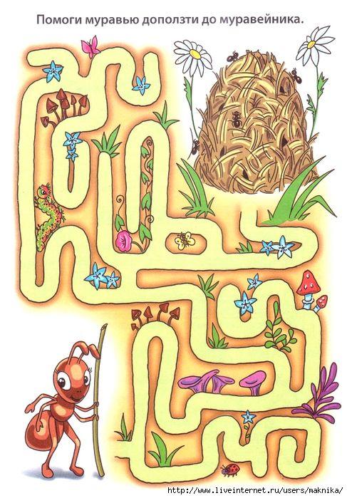 Laberinto hormiga