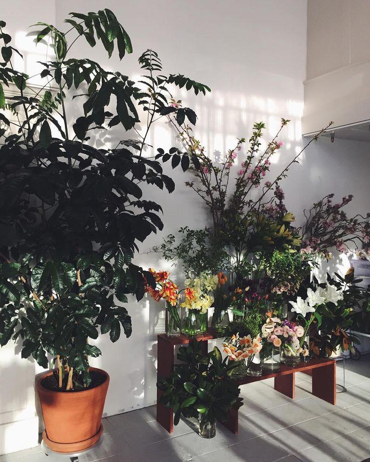 FLORAL u0026 PLANTS PORTLAND OR Deliveries Events