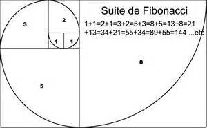 suite de fibonacci Léonardo Fibonacci - 1202 fortement liée au nombre d'or phi les quotients de deux termes consécutifs de la suite de Fibonacci sont les meilleures approximations du nombre d'or (source wikipédia)