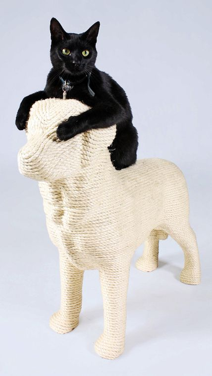 Dog Shaped Cat Scratching Post Mad Love Pinterest