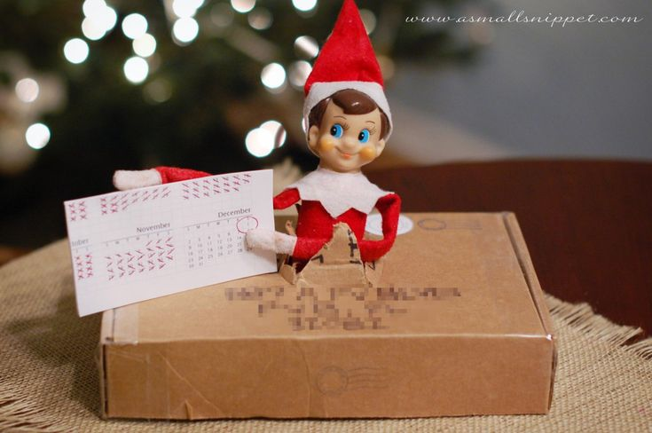 Elf busted right out of his box, and brought us his calendar to show us that he had been counting down the days.