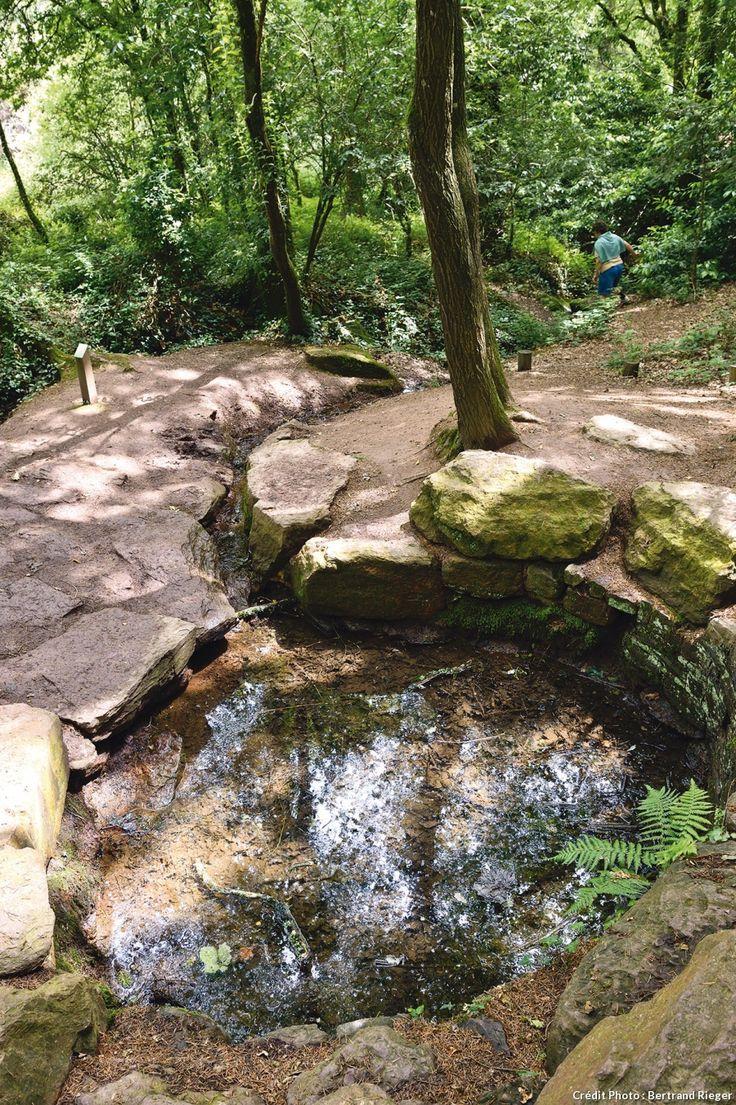 Forêt de Borcéliande - La Fontaine de Jouvence, dont les eaux feraient gagner un an de vie à ceux qui en consomment