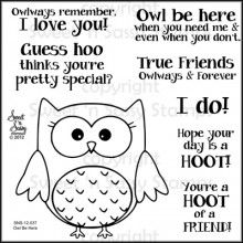 """""""Owl Be There"""" Clear stamp set at sweetnsassystamps.com  $11.00  SKU:  SNS-12-037"""