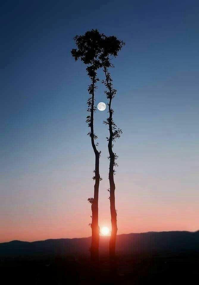 El sol y la luna juntos