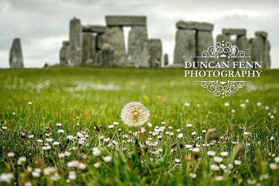 Fine Art Photography | Dandelion with Stonehenge as the background | UK Britain Travel
