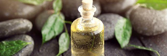 Arbre à thé : 6 manières d'utiliser l'huile essentielle au quotidien
