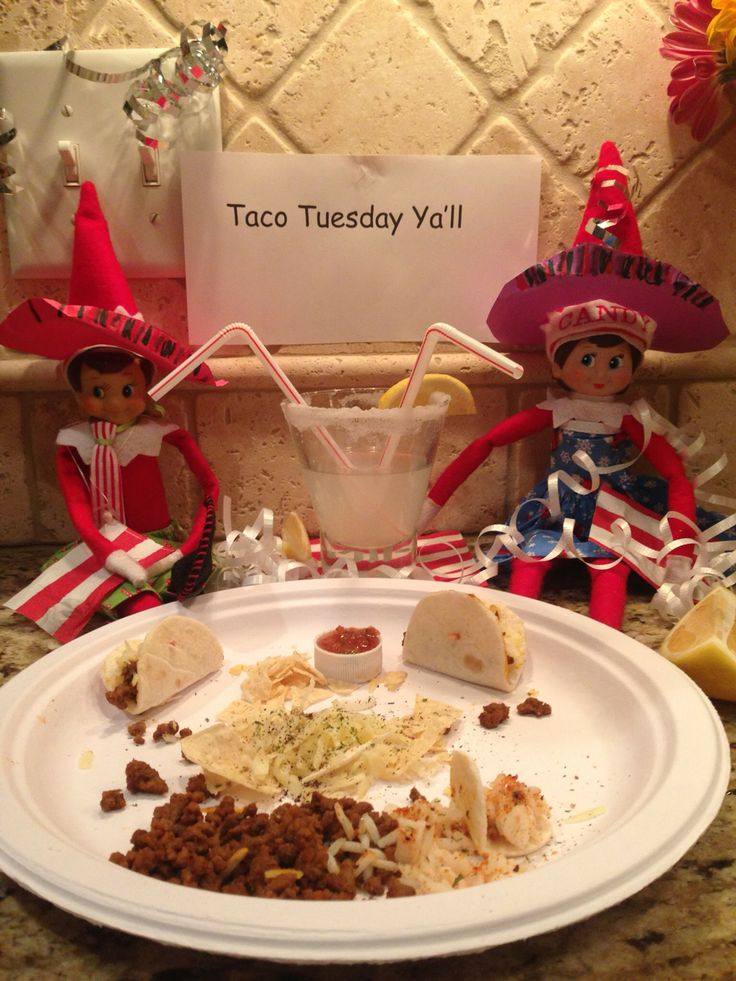 Taco Tuesday Elf Elf On The Shelf Candy And Cooper