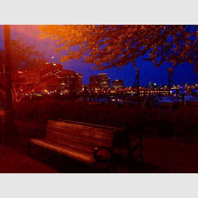 Portland waterfront at night