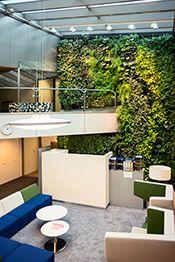Plantwall, Groene wand, Plantenmuur, Vertical garden, Plantenwand, Green Fortune, OVT, Rotterdam, The Netherlands