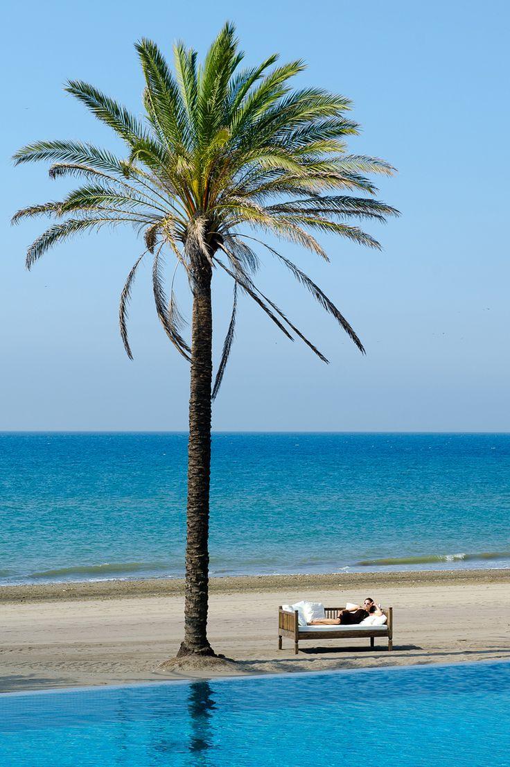 41 best beach club estrella del mar images on pinterest beach club del mar and beaches - Estrella del mar beach club ...