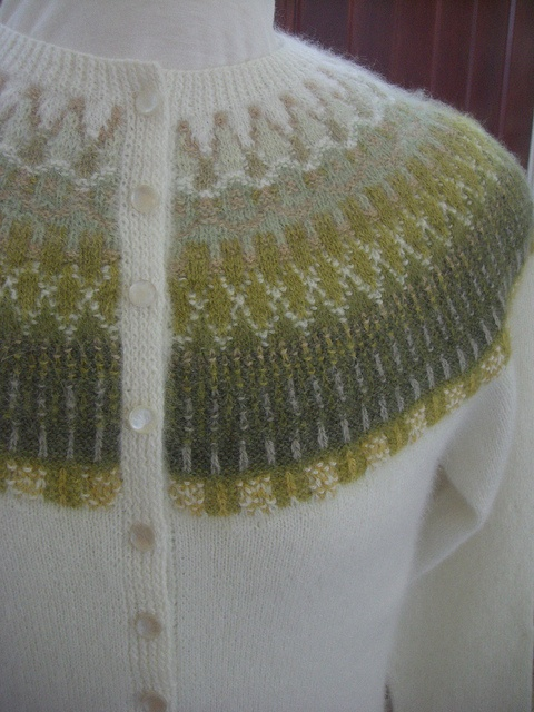 collar and button band detail by Susan Newhall, via Flickr